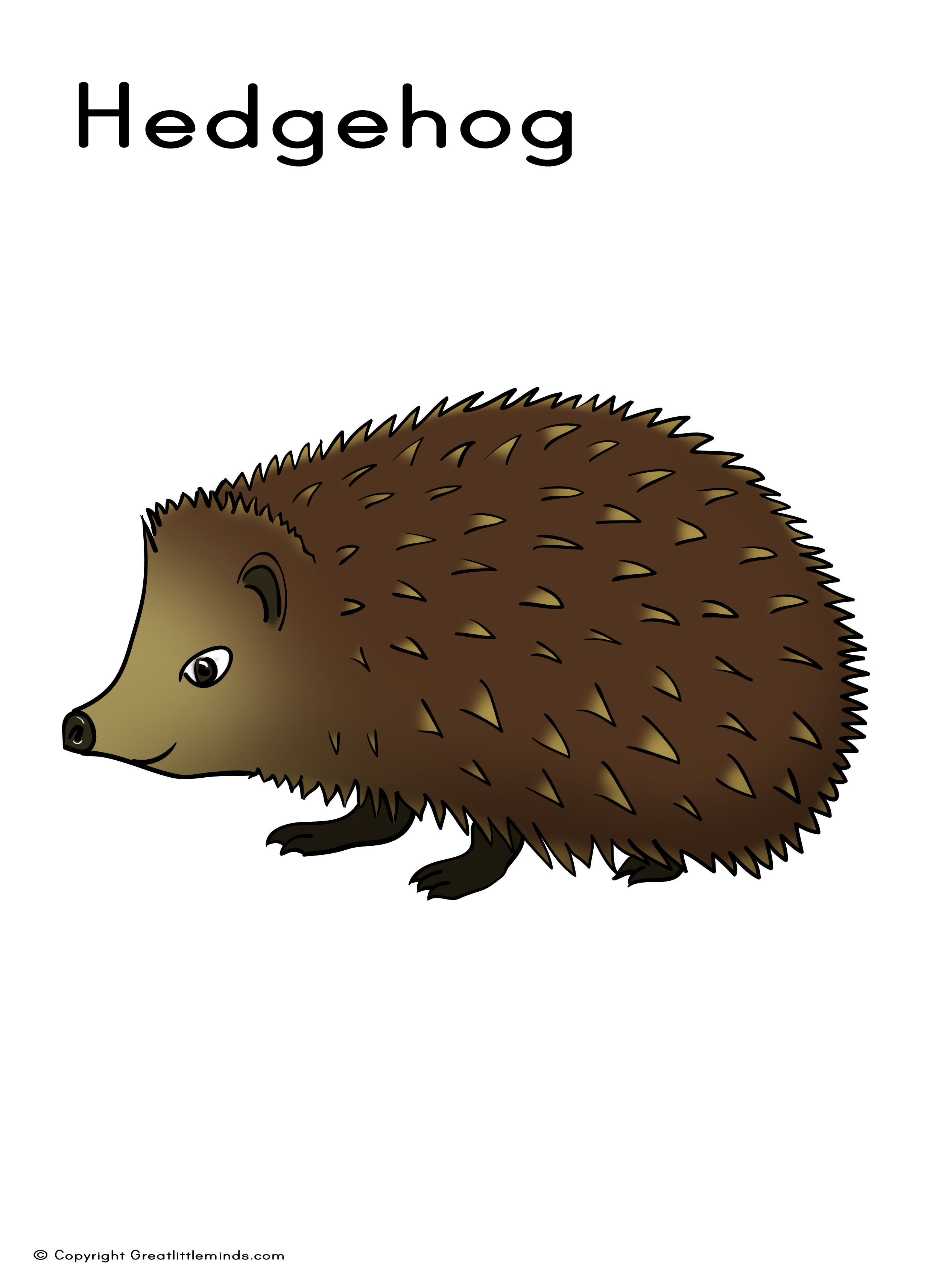 Hedgehog Pictures To Print